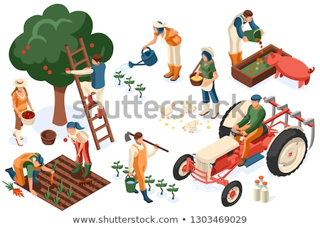 Woman growing a plant isometric 3D illustration. Stock photo © RAStudio