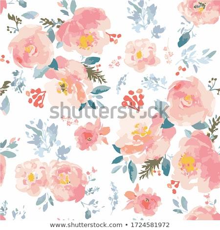 Gevşek suluboya güller dizayn elemanları Stok fotoğraf © shawlinmohd