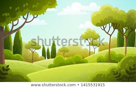 Yeşil manzara ağaçlar çim bahar Stok fotoğraf © robuart