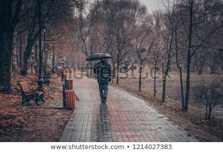 Man Walking in City Park Alone, Urban Landscape Stock photo © robuart