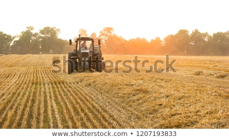 Farmer Standing In Front Of Bales And Old Farm Equipment Stock photo © HighwayStarz