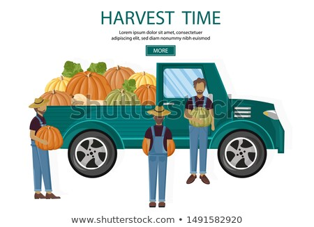 Agricultores colheita tem vetor bandeira Foto stock © frimufilms