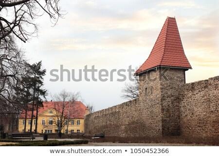 Town Fortification In Swiebodzice Stok fotoğraf © Oxygen64