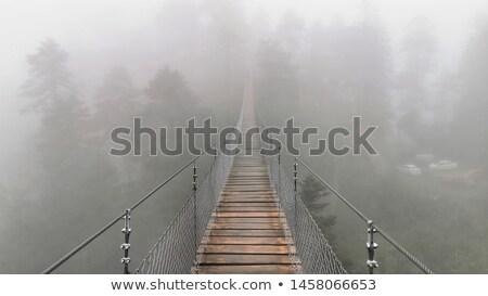 Bridge fog Stock photo © orla