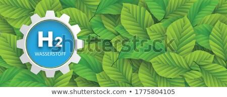 Gear колесо зеленые листья текста водород прибыль на акцию Сток-фото © limbi007