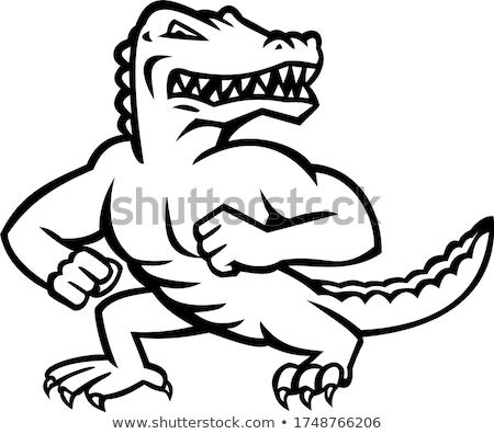 Jacaré jacaré em pé posição mascote Foto stock © patrimonio