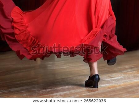 flamenco · gitár · felső · stílus · akusztikus · gitár · vidék - stock fotó © illustrart