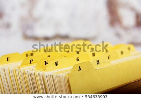 Tarjeta archivo cuadro negocios escuela hoja Foto stock © pterwort