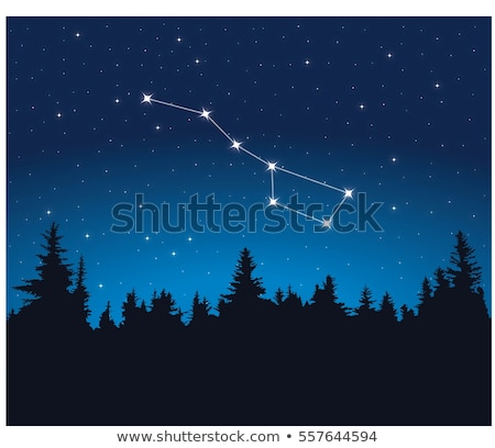 vector constellation of Big Dipper Stock photo © Dahlia