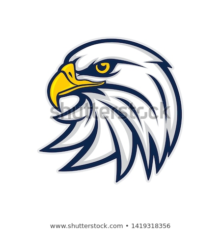 Eagle Head Graphic Mascot Vector Illustration stock photo © chromaco
