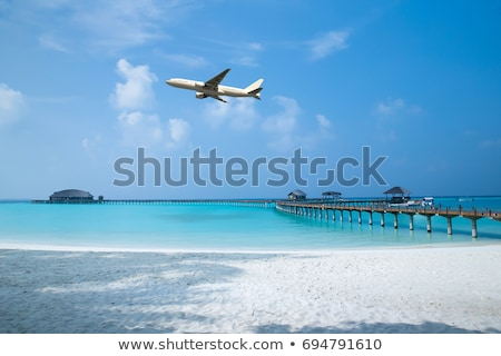island from plane. maldives Stock photo © Paha_L