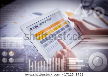 businesswoman examining graphic charts Stock photo © photography33
