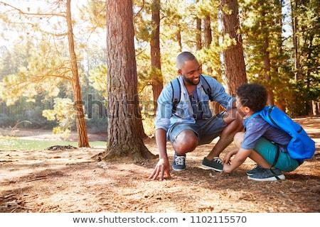 Filho pai caminhada mata família floresta menino Foto stock © photography33