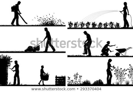 jardinagem · silhuetas · conjunto · ferramenta · silhueta · ícones - foto stock © sifis
