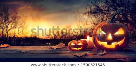 Stock photo: Halloween night with sunset