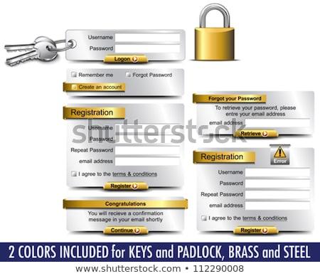 bejelentkezés · regisztráció · űrlap · ui · terv · doboz - stock fotó © fenton