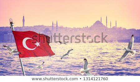 mesquita · silhueta · istambul · escuro · metade · lua - foto stock © experimental