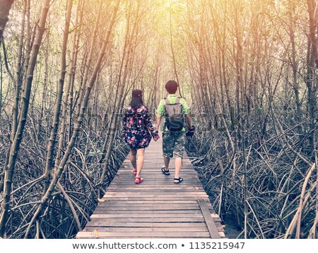 a couple on a wooden bridge in a park Stock photo © photography33