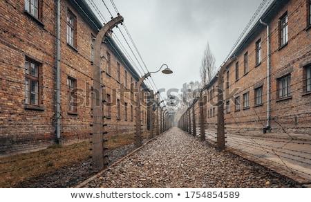 Tel çit konsantrasyon kamp siyah beyaz Polonya Stok fotoğraf © Arsgera