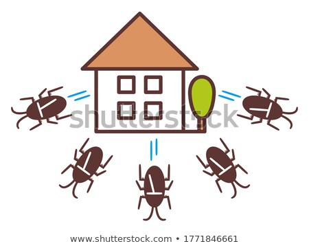 Cucaracha vector Cartoon funny casa puerta Foto stock © pcanzo