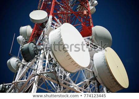 Telekommunikáció torony fák fölött város fotó Stock fotó © Antonio-S