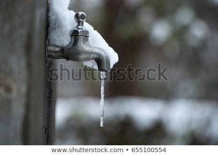 Sneeuw opknoping water bos Stockfoto © nature78