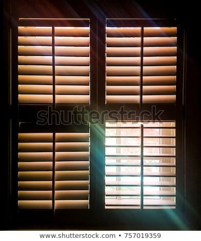 öreg viharvert ablak zsalu kép épület Stock fotó © sophie_mcaulay