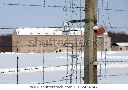 Concentration camp ville arbre été Photo stock © prill