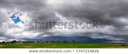 Vihar tengerpart erőteljes égbolt természet fény Stock fotó © vrvalerian