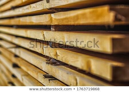Fa frissen vág nap szabadtér fűrészmalom Stock fotó © rhamm
