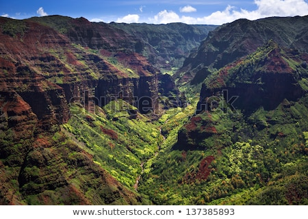 ridges of waimea canyon stock photo © searagen