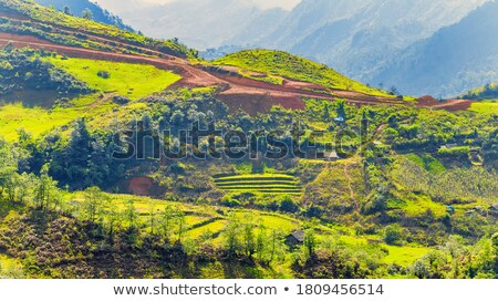 vietnam landscape chain of mountain cloudy sky stock photo © xuanhuongho