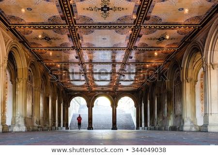 セントラル·パーク テラス ニューヨーク 空 市 太陽 ストックフォト © lunamarina