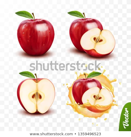 Alma vektor levél gyümölcs rajz friss Stock fotó © Mr_Vector