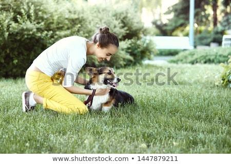 kutya · ül · tulajdonos · aranyos · tacskó · kutyakölyök - stock fotó © willeecole
