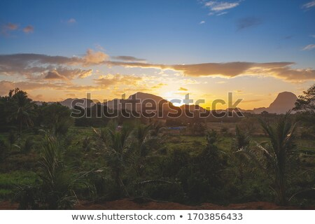 stunning sunset scenery in el nido philippines stock photo © tommyandone