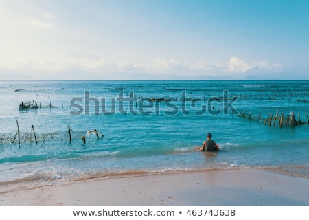 algues · faible · marée · bali · plage · île - photo stock © artush
