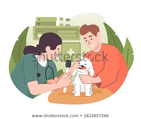 Vet examining a dog with stethoscope  Stock photo © wavebreak_media