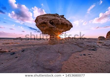 extraordinary stock photo © carmen2011