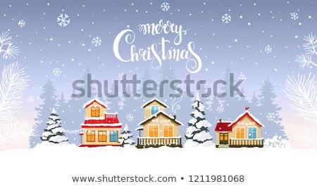 fabulous house in the snow stock photo © kotenko