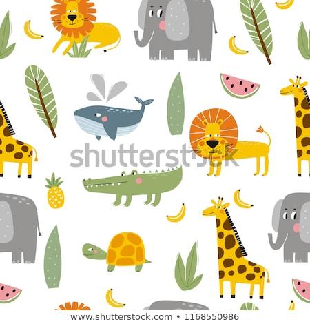 Giraffe Face Icon Stock photo © kiddaikiddee