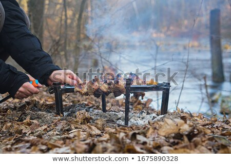 Carne a la parrilla vegetales ceniza macro hortalizas Foto stock © romvo
