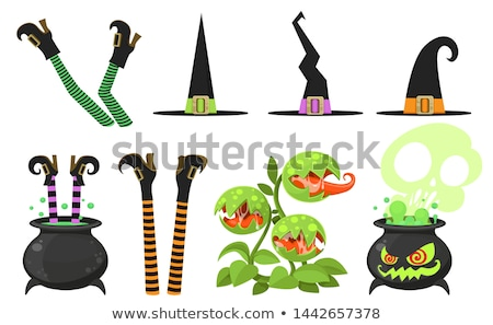 witch legs and trick or treat Stock photo © adrenalina