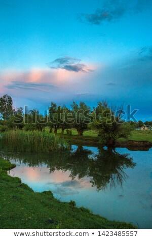 Pôr do sol danúbio delta verão tempo céu Foto stock © mady70
