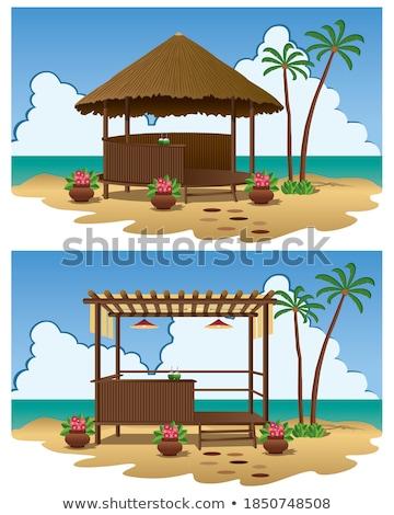 Plaży biały piasku rząd Błękitne niebo Zdjęcia stock © zhekos