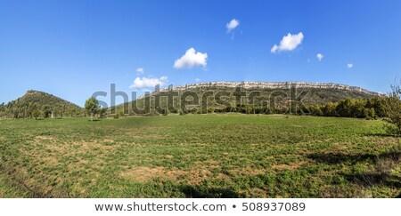 famous montagne sainte Victoire at chateauneuf le Rouge Stock photo © meinzahn