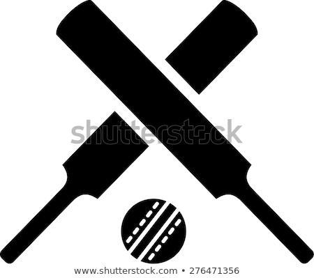 крикет Bat икона черно белые мяча черный Сток-фото © angelp