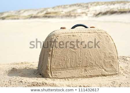 Suitcase in a tropical beach with holiday writing Stock photo © alphaspirit