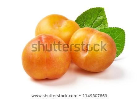 sarı · erik · yeşil · yaprak · meyve · yeme - stok fotoğraf © simply