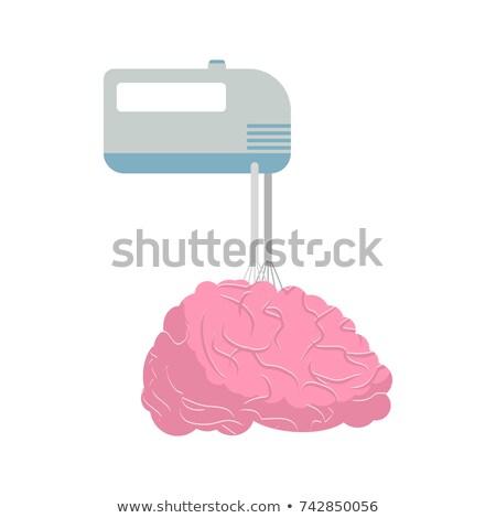 Mixer hersenen gedachten vector voedsel Stockfoto © MaryValery